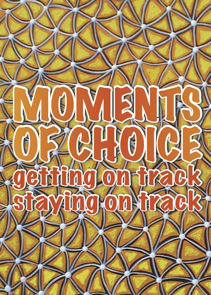 moments of choice cover